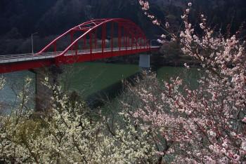 月ヶ瀬月ヶ瀬橋