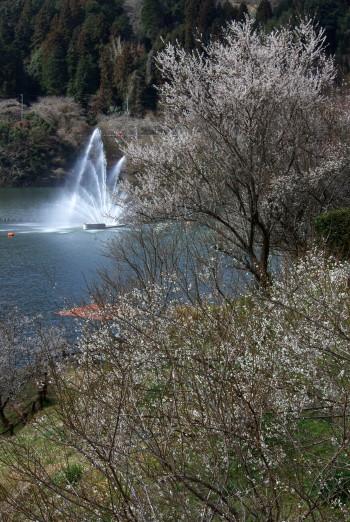 月ヶ瀬湖畔噴水