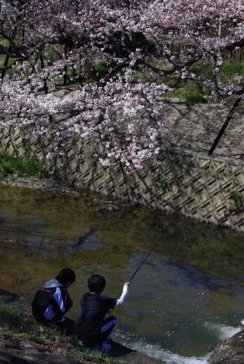 川路桜と釣りをする少年