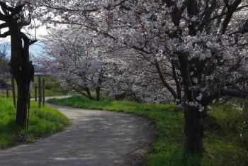 山之辺の道 桧原神社