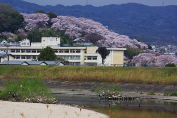 三室山遠景