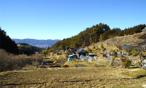 kotokami21.jpg