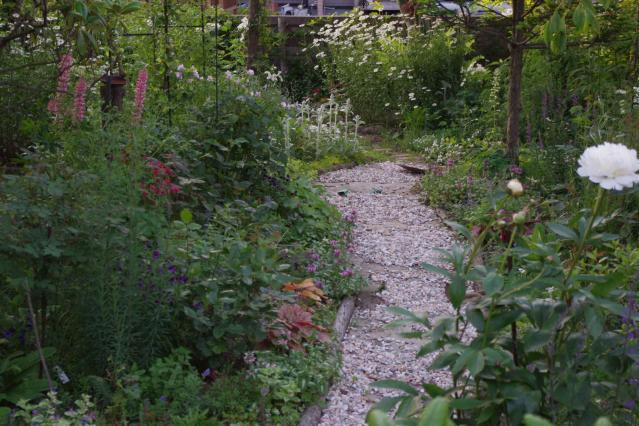 6月26日のお庭