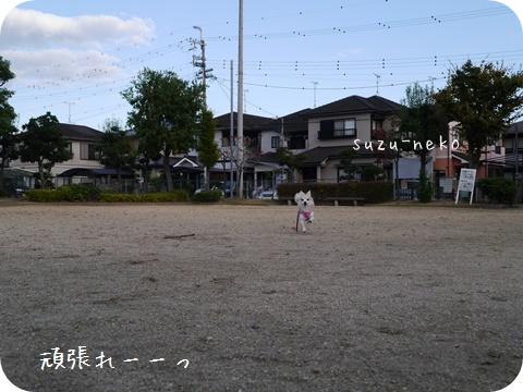 20141025-004.jpg