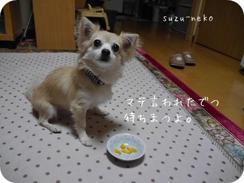 20141025-007.jpg