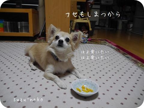 20141025-009.jpg