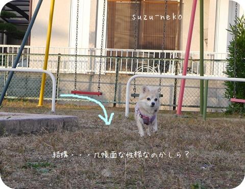 20141027-010.jpg