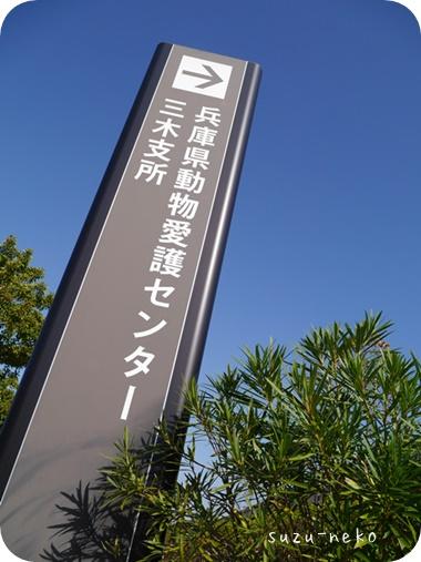 20141111-001.jpg