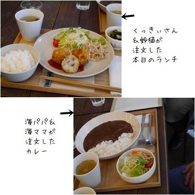 20141203-1-001.jpg
