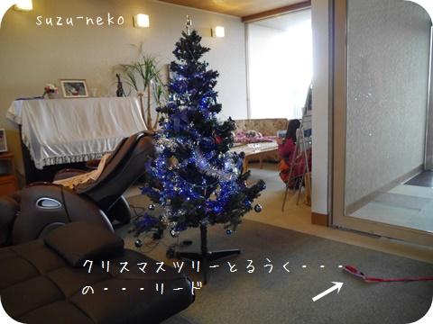 20141205-004.jpg
