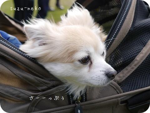 20141205-011.jpg
