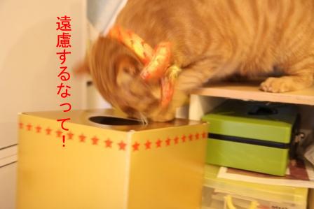 レッド隊長20101219-2