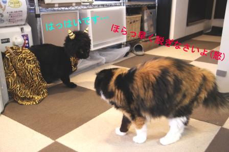 しろう店長20110203-3