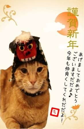 ちゃんぷ20120101