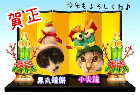 黒丸20120102