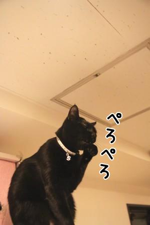 しろう店長20120126-2