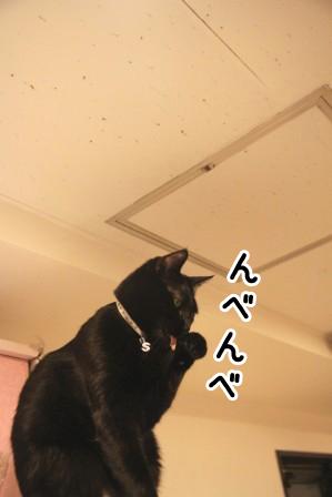 しろう店長20120126-3