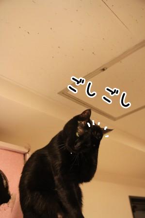 しろう店長20120126-4