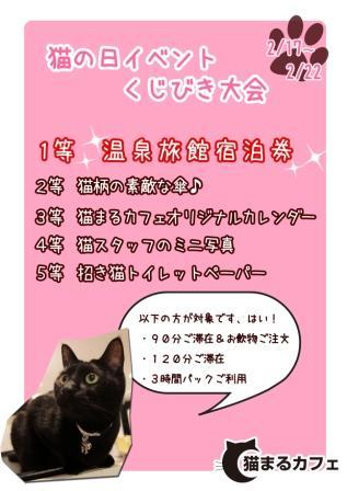猫の日イベント2012