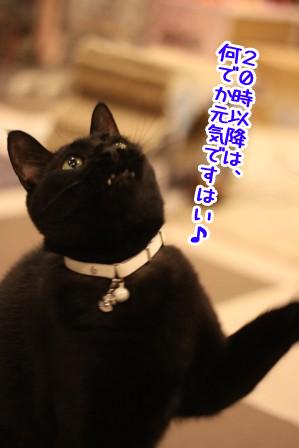 しろう店長20120411-2
