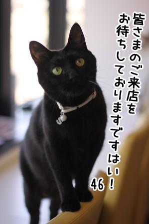 しろう店長20120413