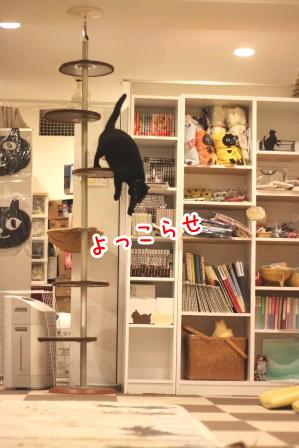 しろう店長20120502-5