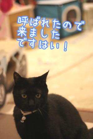 しろう店長20120502-11