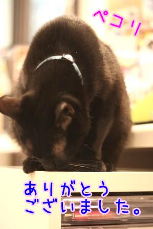 しろう店長20120522
