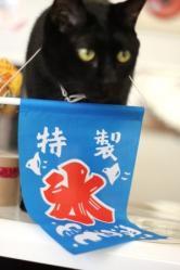 しろう店長20120614-2