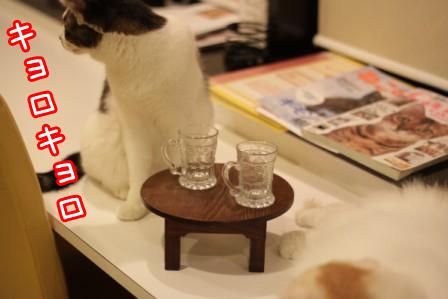 ひげごろう20120716-3