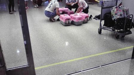 那覇空港到着20120822