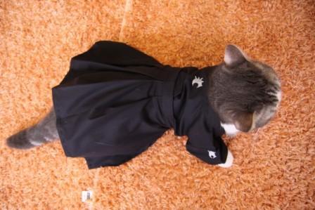 マール衣装2012