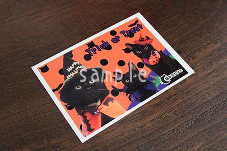 黒猫'S2012