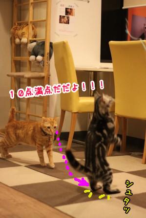 凛太朗20121105-6