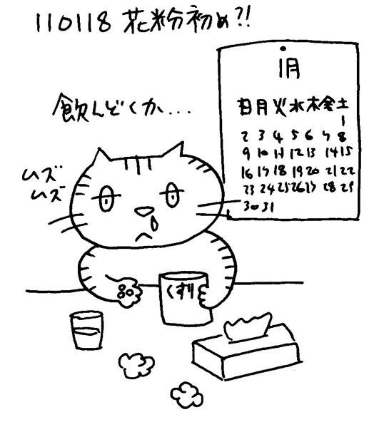 110118 花粉初め
