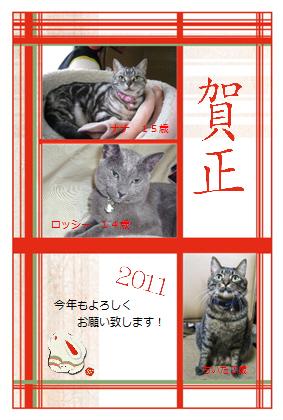 デザイン.pdnh23年賀猫3