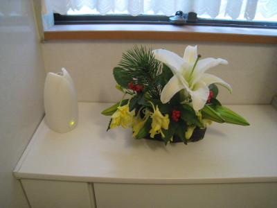 h23正月の花トイレ