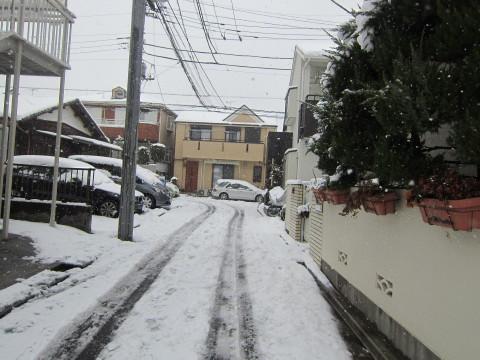 h24,2雪2