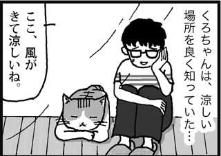 くろちゃんは、涼しい場所を良く知っていた… ここ、風がきて涼しいね。