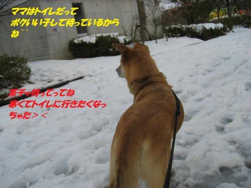 IMG_1574_convert_20131230075933.jpg
