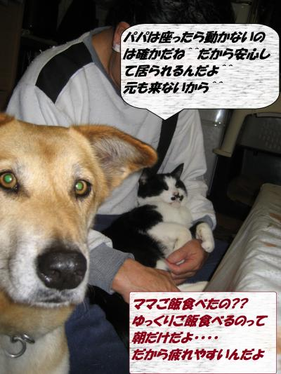 IMG_1578_convert_20131230080219.jpg