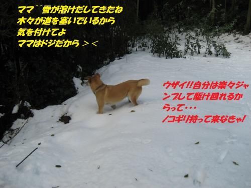IMG_1586_convert_20131231080241.jpg