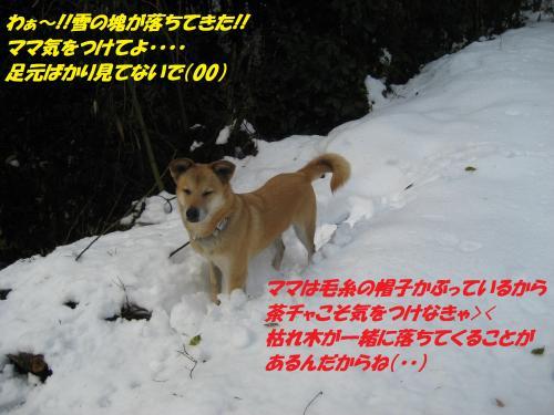 IMG_1587_convert_20131231083434.jpg