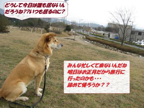 IMG_1598_convert_20140101082800.jpg