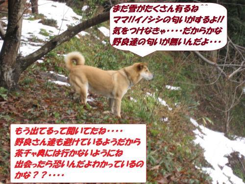 IMG_1616_convert_20140118092343.jpg