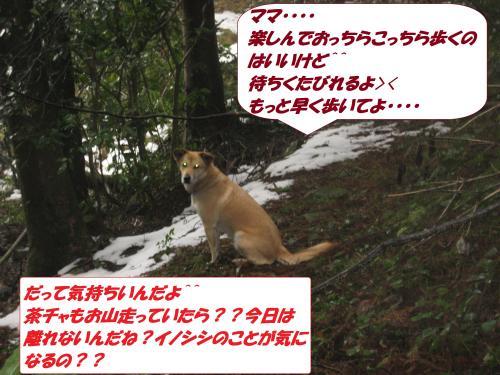 IMG_1621_convert_20140118092359.jpg