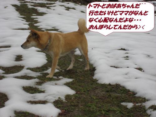 IMG_1623_convert_20140118092413.jpg