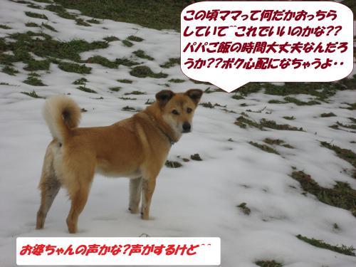 IMG_1624_convert_20140118092426.jpg