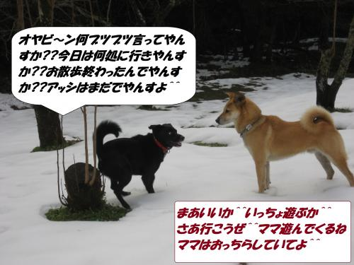 IMG_1627_convert_20140118092452.jpg