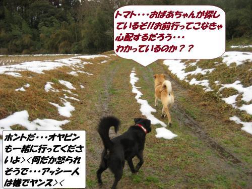 IMG_1630_convert_20140118092525.jpg